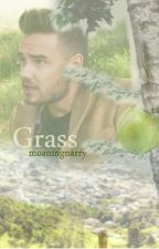 Grass. II Liam Payne by moaningnarry
