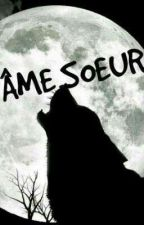 Âme soeur by LaurieCourjou