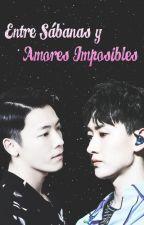 [ EunHae ] Entre Sábanas y Amores Imposibles. by Agus_ELF