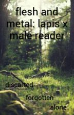 flesh and metal: Lapis x Male Reader by Warriorblood252