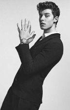 El Heredero - Shawn Mendes -  by katerine-94