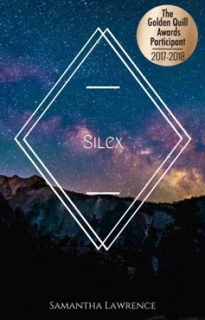 Silex by wandsandwillows