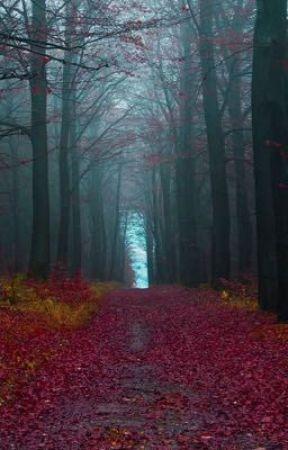 Há um Homem na Floresta by Besour0
