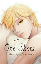 One-Shots [Adrien Agreste/ Chat Noir y tú] by Sweet_Love26