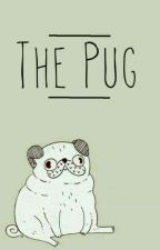 The Pug by strawhat_pirate