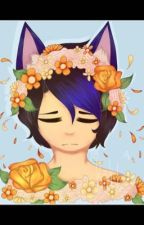 Acceptness(Aphmau sequel to 'second chance') by catkittylover