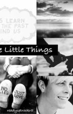 The Little Things - A Riker Lynch Fanfic by readysetrockr5__