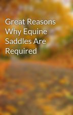 Great Reasons Why Equine Saddles Are Required by leaf33marty
