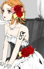 [ One Piece Fanfiction ] Nami's harem by samanthathompson079