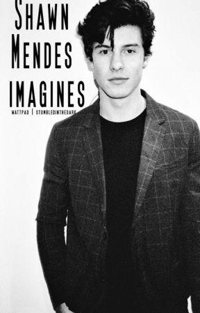 Shawn Mendes Imagines & One Shots by stumbledinthedark