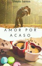 Amor Por Acaso - Família Lorenzo Livro 5 (Concluído) by sheylaoliversantos