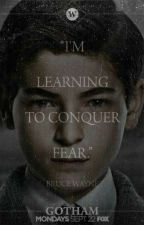 I'm Learning To Conquer Fear (BRUCE WAYNE X READER) by I_Am_The_Weirdest