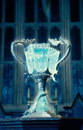[Tome 4] Les jumeaux Potter et la Coupe de Feu by CarolineMichel2