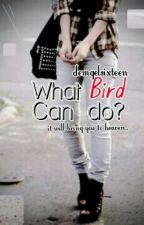 What BIRD Can Do? (spg) by demgelsixteen