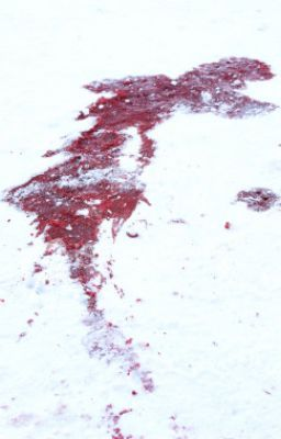 As The Blood Mixed Snow Melts