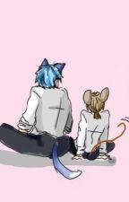 [Tom and Jerry Fanfic] [JerryTom] Nhìn tôi. by Sakata_Toushirou