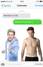 I don't like you - Niam texting by 2015KT2015