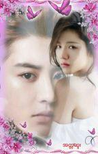 အတၱဆူး  by Chan-Thiri-Yeol