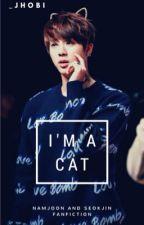 I'm a cat? •Namjin• by _JHobi