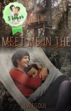 meet me in the tree house 🍃 larry stylinson by lwtsoul