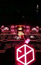 EXO AND EXO-L by winjilika