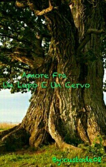 Amore Fra Un Lupo E Un Cervo