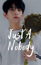 JUST A NOBODY ↺ by sentimentalhan