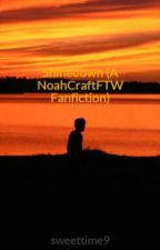 Shinedown (A NoahCraftFTW Fanfiction) by sweettime9