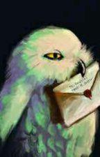 RP Harry Potter { Ouvert } by nimphadora77