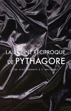 La bonne réciproque de Pythagore by larmesmauves