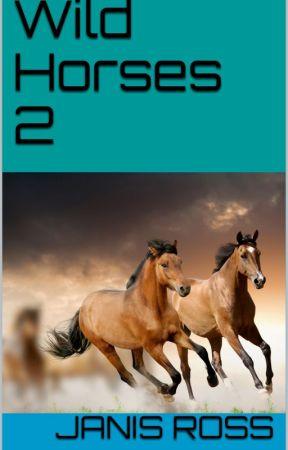 Wild horses by JanisRoss