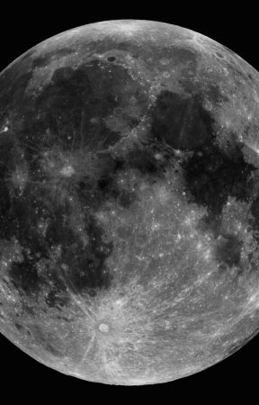 Je La vois la nuit by Fumi_le_Koala