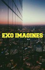EXO Imagines ((HIATUS)) by WinterAngel_27