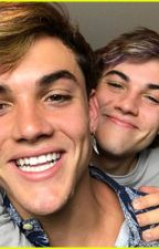 Love or Friendship? || A Dolan Twins Imagine by Serena_935
