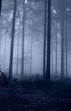 A Floresta Sem O Amanhã  by GabrielReis15
