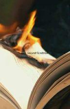 Secret Untold by Semiiiiiiiiiii