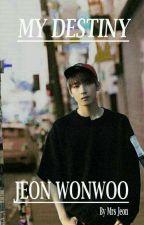My destiny - Jeon Wonwoo (End-Private) by MrsJeon1494
