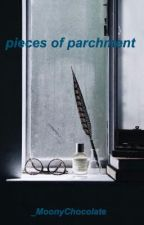 ✿ pieces of parchment ✿  by _MoonyChocolate