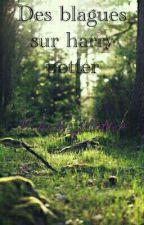 Des blagues sur harry potter by Melody_Potter