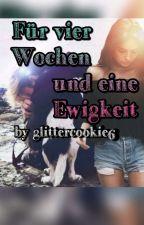 Für vier Wochen und eine Ewigkeit  Bars and Melody fan fiction  by glittercookie6