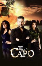 EL CAPO by Doto123456789