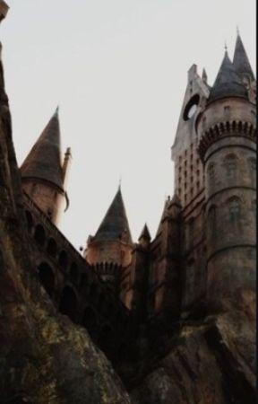 Harry Potter (Characters) x Reader by PenguinQuartz