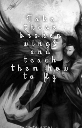 Take these broken wings and teach them how to fly by Maybejustme2