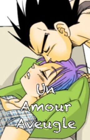 DBZ Couples ~Bulma x Vegeta [Un Amour Aveugle]~ by DBZ_BulmaxVegeta