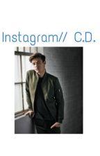 Instagram//  C.D. by elisavegnuti