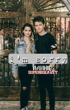 I'm Sorry | A Hannie Fanfic by xxhippoxx