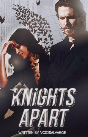 knights apart ( bruce wayne ) by voidsalvahoe