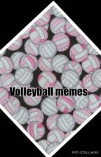 Volleyball memes by sparkling_muffin