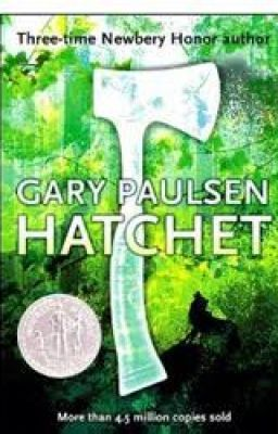 hatchet book report summary The hunger games by suzanne collins hatchet by gary paulsen catching fire   since this is a kids book, i think you need to hear a review from a 13 year old   first i'm going just to tell you a short summary on the main parts of this book.