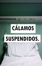 Cálamos Suspendidos. by cuatroletrasparati